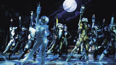 The Jellicle Cats. Dancers dressed in tight bodysuits and cat makeup fill the stage. A moon is lit up in the background and all the dancers are reaching one arm up to the sky, looking up at their extended hand.