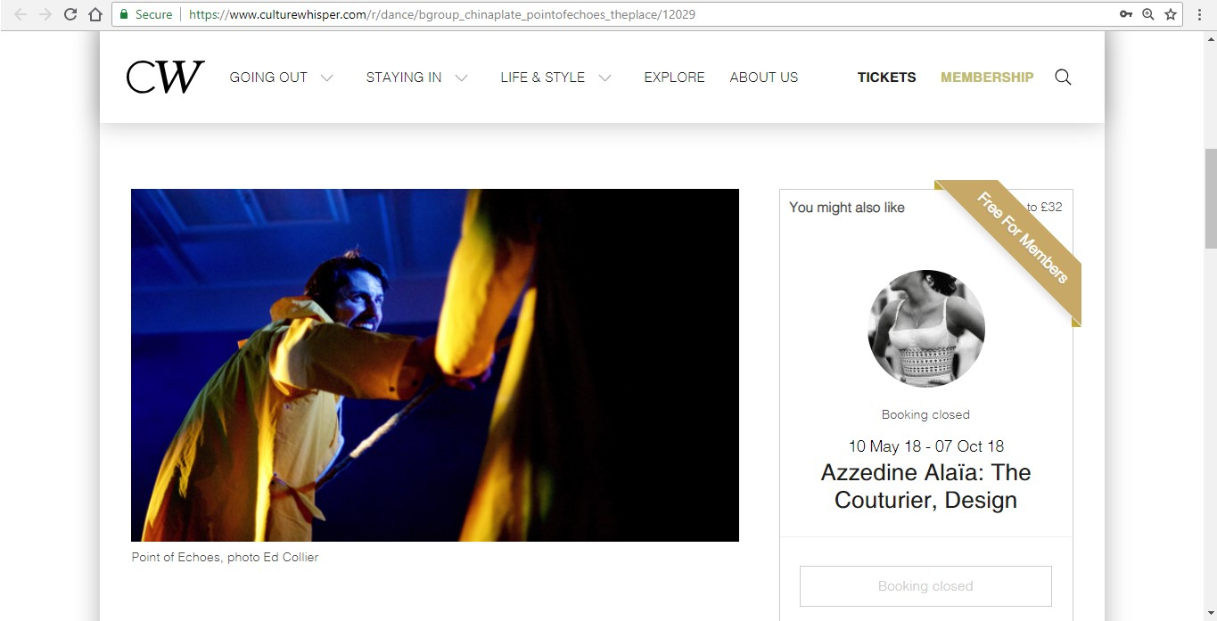 Screenshot of Culture Whisper content by Georgina Butler. Preview of bgroup and China Plate: Point of Echoes, image 2