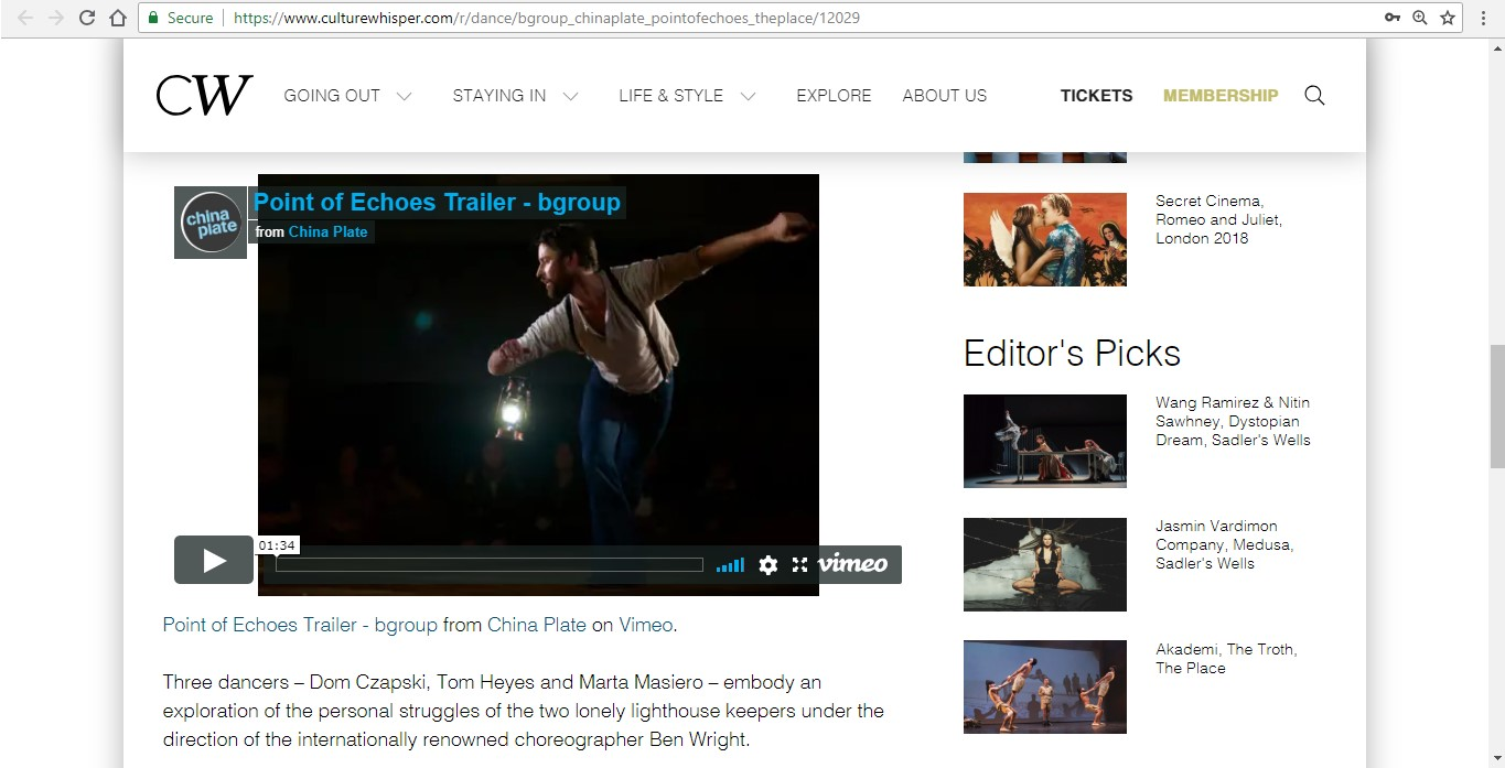 Screenshot of Culture Whisper content by Georgina Butler. Preview of bgroup and China Plate: Point of Echoes, image 4